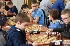 DSC_7008_szachy_skoczek_02_2020