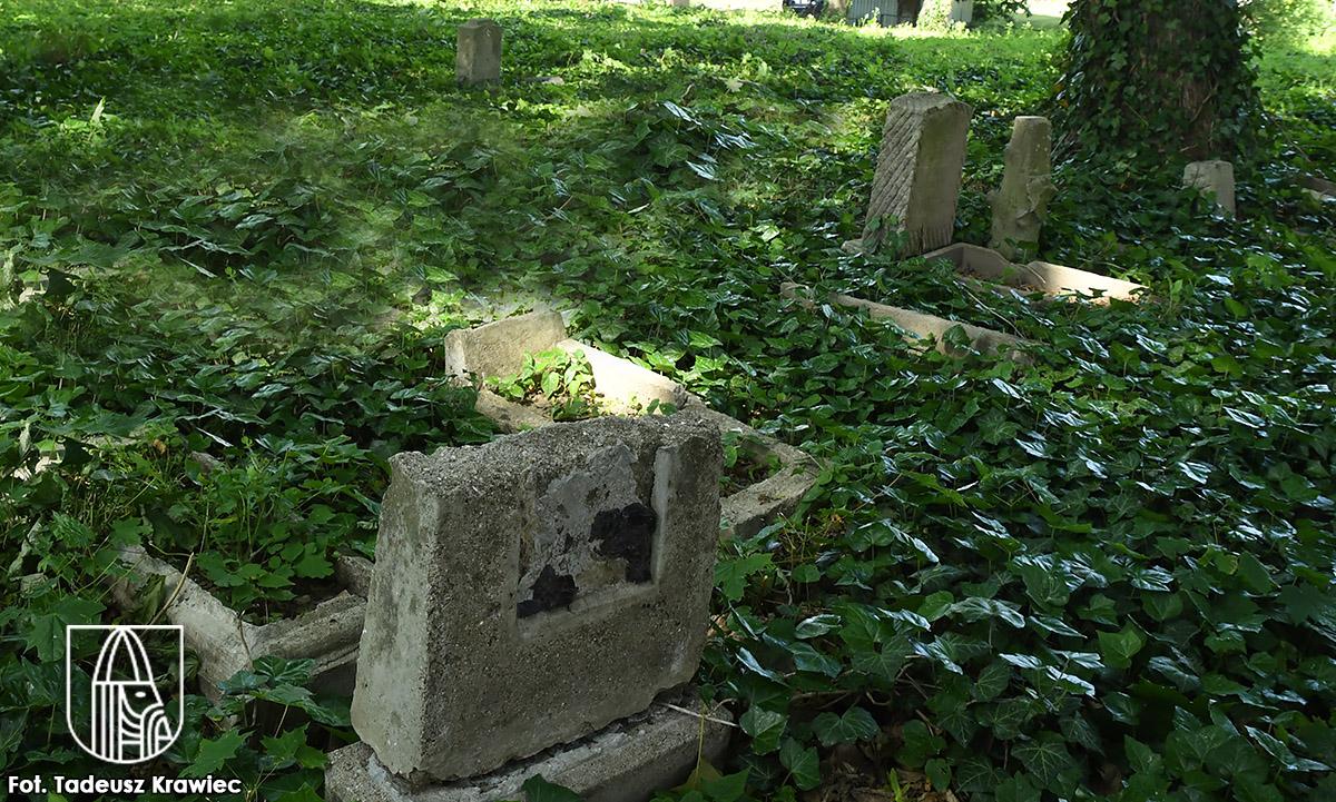 Ze starego cmentarza zniknęły krzaki