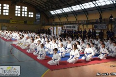 DSC0424_karate_2019